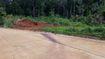 Tạm giữ 8 nghi phạm chém chết trưởng trạm bảo vệ rừng