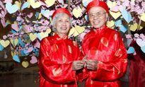 Chùm ảnh: Hà Nội hào hứng với ngày Gia đình Việt Nam