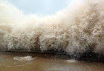 Tin bão Goni chiều ngày 21/8: Bão di chuyển theo hướng Bắc