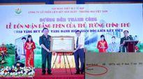 Liên Kết Việt giả mạo bằng khen của Thủ tướng Chính phủ?