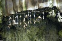 Kỳ quái giếng nước có thể biến mọi vật thành đá