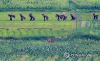 Ảnh 'chụp trộm' lính Triều Tiên sau khi Bình Nhưỡng hủy tình trạng chiến tranh