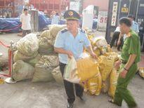 8 tấn sừng tê giác, ngà voi 'theo tàu' về Đà Nẵng