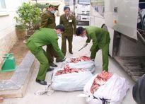 Phát hiện xe khách Hải Phòng chở hơn 700 kg bì lợn thối