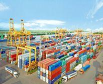 Nhiều container bỏ quên 10 năm ở cảng Hải Phòng