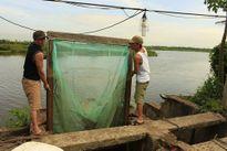 Anh em ông Đoàn Văn Vươn ra cải tạo đầm thủy sản sau ngày đặc xá, tự do