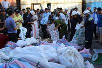 Khởi tố vụ buôn lậu gần 2,2 tấn ngà voi tại cảng Tiên Sa