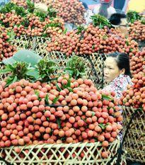 Hội nhập khiến nông nghiệp không còn đường lùi