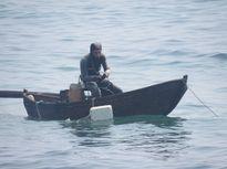Lặn tìm nhím biển 'tiến vua'
