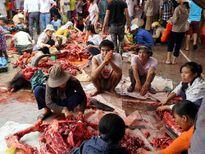 Chen nhau mua thịt trâu chọi tiền triệu