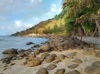 Ngây ngất với 4 hòn đảo nhỏ, hoang sơ, ít biết ở Việt Nam