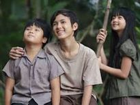 """Bộ phim """"Tôi thấy hoa vàng trên cỏ xanh"""": """"Cơn sốt"""" có thật của điện ảnh Việt"""