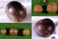 Những quả cầu kỳ lạ 2,8 tỷ năm tuổi