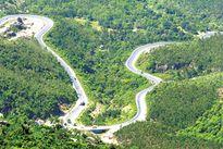 Tiếp tục thí điểm chia sẻ lợi ích phát triển rừng đặc dụng