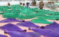 Đồng Tháp: Làng nghề dệt chiếu Định Yên trở lại thời hoàng kim