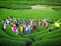 Tour Hà Giang, Mộc Châu đắt khách