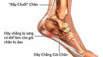 Các bệnh gây đau gót chân và thuốc trị