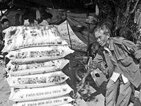 Làm phân bón làm từ gạch, đất, đá...bán cho nông dân