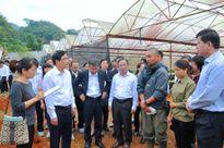 Phát triển nông nghiệp công nghệ cao: Mộc Châu sẽ là 'Đà Lạt của miền Bắc'?