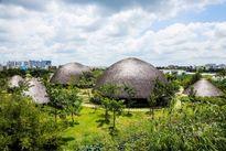 Những ngôi nhà lá khổng lồ bên sông Sài Gòn