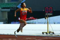Việt Nam phấn đấu đạt 45 đến 48 HCV tại Asean Para Games 2015