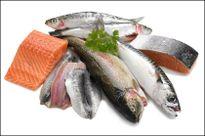 Loại cá phụ nữ mang thai có chết đói cũng không được ăn