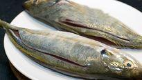 Có nên ăn nội tạng cá không?