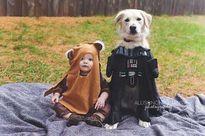 Những bức hình yêu không chịu nổi về tình bạn của bé và cún cưng