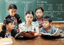 Lời giải nào cho sách giáo khoa bộ mới?