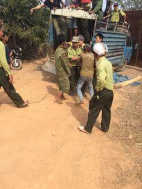 Hàng chục thanh niên vác tuýp sắt vây kiểm lâm để cướp gỗ