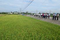 Khánh Hòa công nhận 12 xã đạt chuẩn nông thôn mới