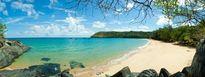 Câu cá biển Đông, khám phá rừng Côn Đảo