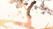 PTL trải nghiệm Sắc màu Nhật Bản: Góc nhìn tươi đẹp và mới lạ về xứ sở Mặt trời mọc