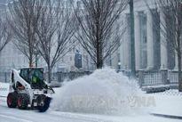 Bão tuyết khiến Mỹ thiệt hại hơn 1,2 tỷ USD