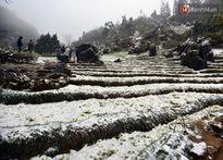 Vì sao khí hậu ấm lên mà mùa đông tuyết lại rơi dày đặc ở khắp nơi