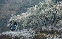 Cặp đôi Sài thành chụp ảnh cưới trong tuyết trắng Mộc Châu