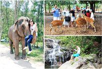 Nhiều hoạt động đón Tết thú vị tại Suối Hoa Lan và đảo Khỉ - Khánh Hòa