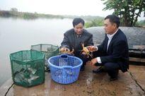 """Xây dựng và phát triển nhãn hiệu sản phẩm """"Cua biển Quảng Yên"""""""