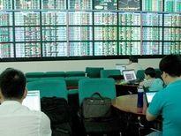 Công ty chứng khoán: Thị trường tăng điểm trong tuần trước Tết