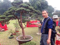 Cây cảnh ngàn đô Việt Nam đọ dáng 'siêu cây' quốc tế