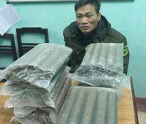 Thanh Hóa bắt giữ vụ vận chuyển 24kg thuốc nổ