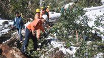 Ngành điện thiệt hại hơn 1,5 tỷ đồng do băng tuyết