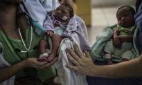 Virus Zika chính thức được 'báo động đỏ' trên toàn cầu