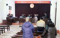Xử sơ thẩm 'vụ tai nạn kinh hoàng xe Sao Việt' ở Lào Cai: Lái xe lĩnh án 10 năm tù giam