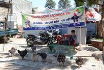 Gia Lai: Gà Đông Tảo bán tại Phố Núi vào dịp cận Tết