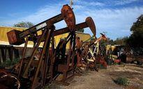 Giá dầu mất 8% một tuần