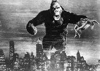 6 bộ phim về Khỉ không thể bỏ qua