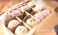 Bình Phước tiêu hủy 400kg táo, lê Trung Quốc