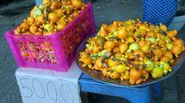 Cảnh báo mua trái độc chưng tết