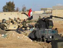 Bộ trưởng Quốc phòng Mỹ đến châu Âu thúc đẩy cuộc chiến chống IS